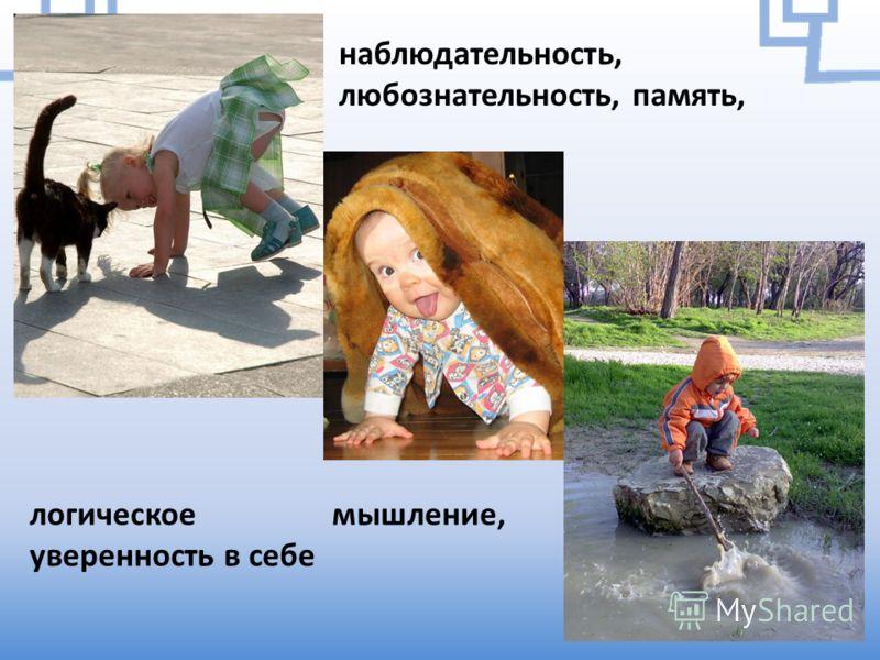 наблюдательность, любознательность, память, логическое мышление, уверенность в себе
