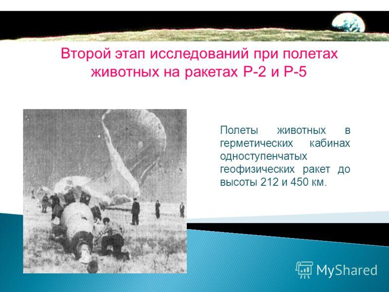Первыми 22 июля 1951 года в космос отправятся Дезик и Цыган, продемонстрировавшие спокойствие и выносливость во всех испытаниях. Они выжили и вернулись на Землю. И как же звали первую советскую собаку- космонавта?