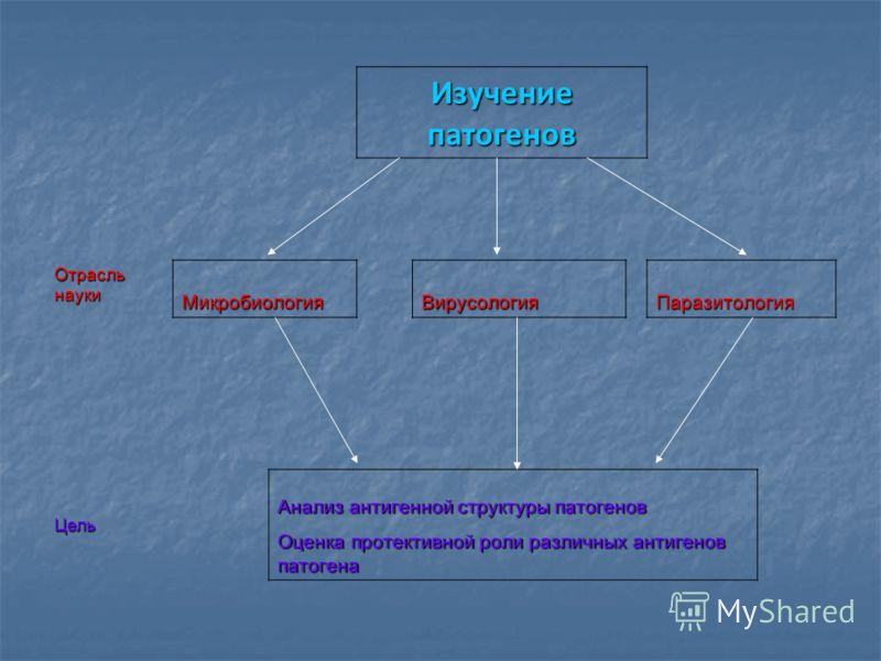 Изучение патогенов Отрасль науки МикробиологияВирусологияПаразитология Цель Анализ антигенной структуры патогенов Оценка протективной роли различных антигенов патогена