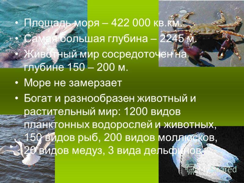 Площадь моря – 422 000 кв.км. Самая большая глубина – 2245 м. Животный мир сосредоточен на глубине 150 – 200 м. Море не замерзает Богат и разнообразен животный и растительный мир: 1200 видов планктонных водорослей и животных, 150 видов рыб, 200 видов