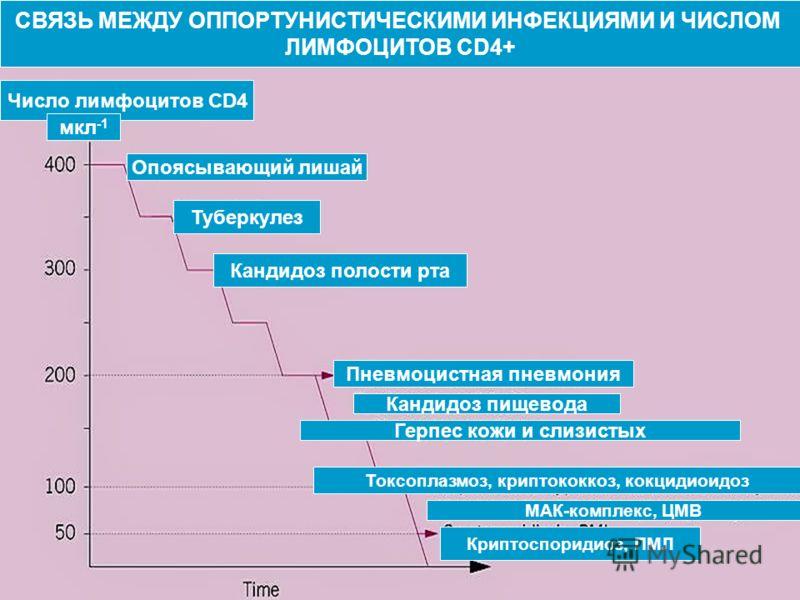 СВЯЗЬ МЕЖДУ ОППОРТУНИСТИЧЕСКИМИ ИНФЕКЦИЯМИ И ЧИСЛОМ ЛИМФОЦИТОВ CD4+ Число лимфоцитов CD4 мкл -1 Опоясывающий лишай Туберкулез Кандидоз полости рта Пневмоцистная пневмония Кандидоз пищевода Герпес кожи и слизистых Токсоплазмоз, криптококкоз, кокцидиои