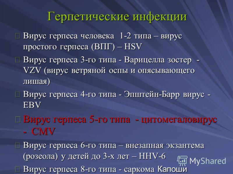 Герпетические инфекции Вирус герпеса человека 1-2 типа – вирус простого герпеса (ВПГ) – HSV Вирус герпеса 3-го типа - Варицелла зостер - VZV (вирус ветряной оспы и опясывающего лишая) Вирус герпеса 4-го типа - Эпштейн-Барр вирус - EBV Вирус герпеса 5