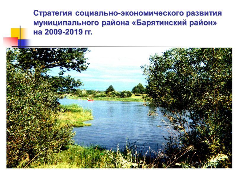 Стратегия социально-экономического развития муниципального района «Барятинский район» на 2009-2019 гг.
