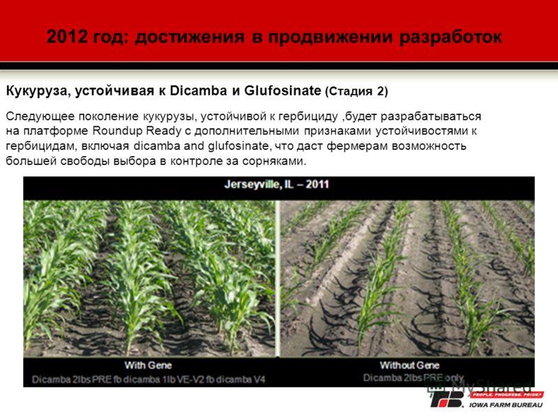 2012 год: достижения в продвижении разработок Кукуруза, устойчивая к Dicamba и Glufosinate (Стадия 2) Следующее поколение кукурузы, устойчивой к гербициду,будет разрабатываться на платформе Roundup Ready с дополнительными признаками устойчивостями к
