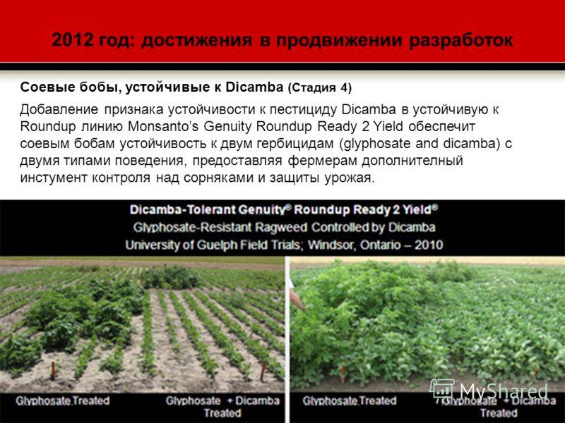 2012 год: достижения в продвижении разработок Соевые бобы, устойчивые к Dicamba (Стадия 4) Добавление признака устойчивости к пестициду Dicamba в устойчивую к Roundup линию Monsantos Genuity Roundup Ready 2 Yield обеспечит соевым бобам устойчивость к