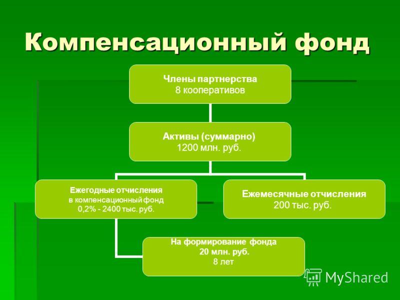Компенсационный фонд Члены партнерства 8 кооперативов Активы (суммарно) 1200 млн. руб. Ежегодные отчисления в компенсационный фонд 0,2% - 2400 тыс. руб. На формирование фонда 20 млн. руб. 8 лет Ежемесячные отчисления 200 тыс. руб.