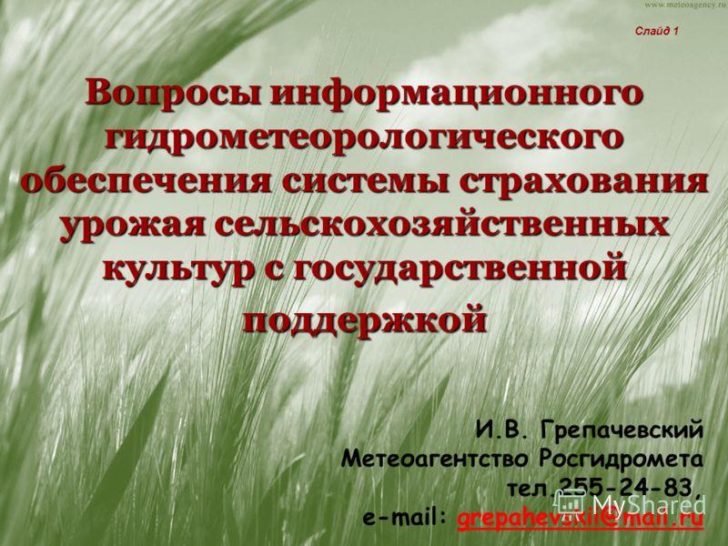 Вопросы информационного гидрометеорологического обеспечения системы страхования урожая сельскохозяйственных культур с государственной поддержкой И.В. Грепачевский Метеоагентство Росгидромета тел.255-24-83, e-mail: grepahevskii@mail.ru Слайд 1