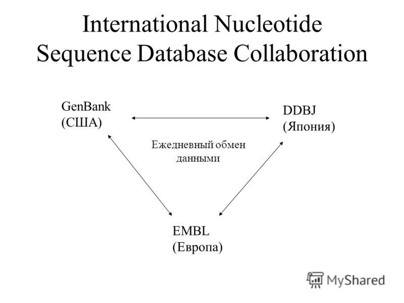 International Nucleotide Sequence Database Collaboration GenBank (США) EMBL (Европа) DDBJ (Япония) Ежедневный обмен данными