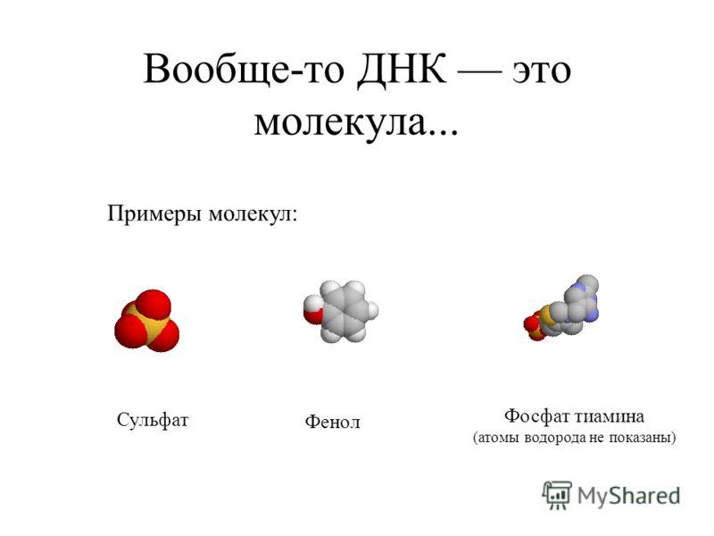 Вообще-то ДНК это молекула... Примеры молекул: Сульфат Фенол Фосфат тиамина (атомы водорода не показаны)