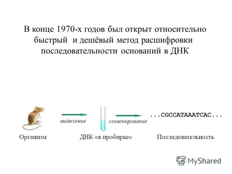 В конце 1970-х годов был открыт относительно быстрый и дешёвый метод расшифровки последовательности оснований в ДНК Организм ДНК «в пробирке»Последовательность выделение секвенирование...CGCCATAAATCAC...
