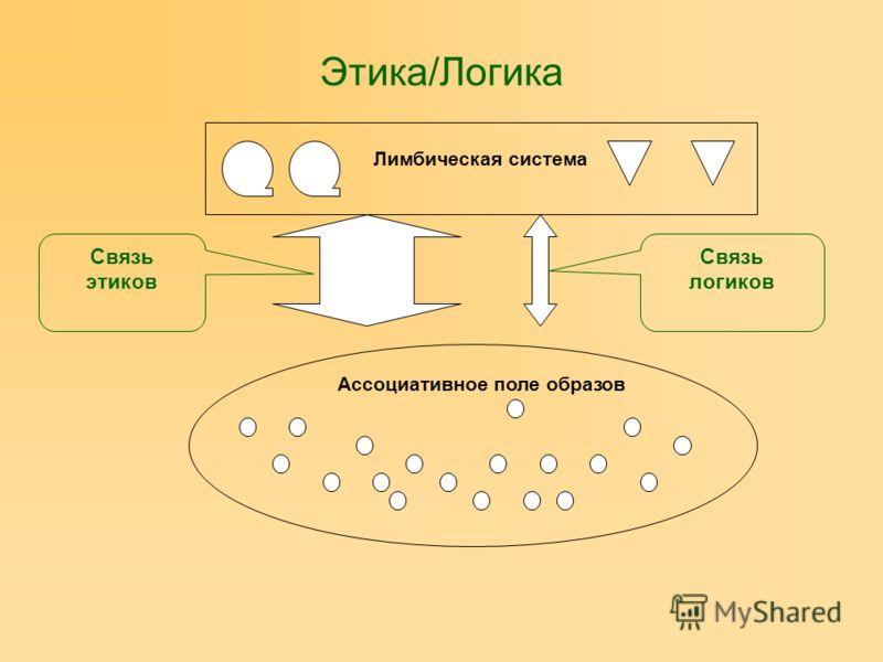 Этика/Логика Лимбическая система Ассоциативное поле образов Связь этиков Связь логиков