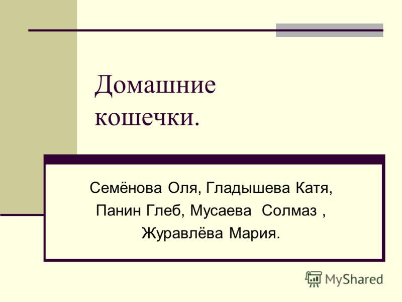 Домашние кошечки. Семёнова Оля, Гладышева Катя, Панин Глеб, Мусаева Солмаз, Журавлёва Мария.
