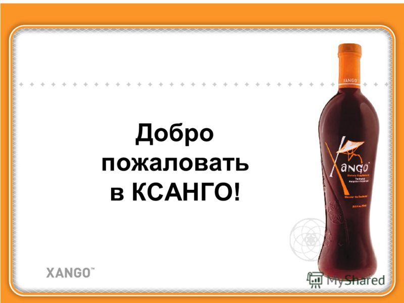 Добро пожаловать в КСАНГО!