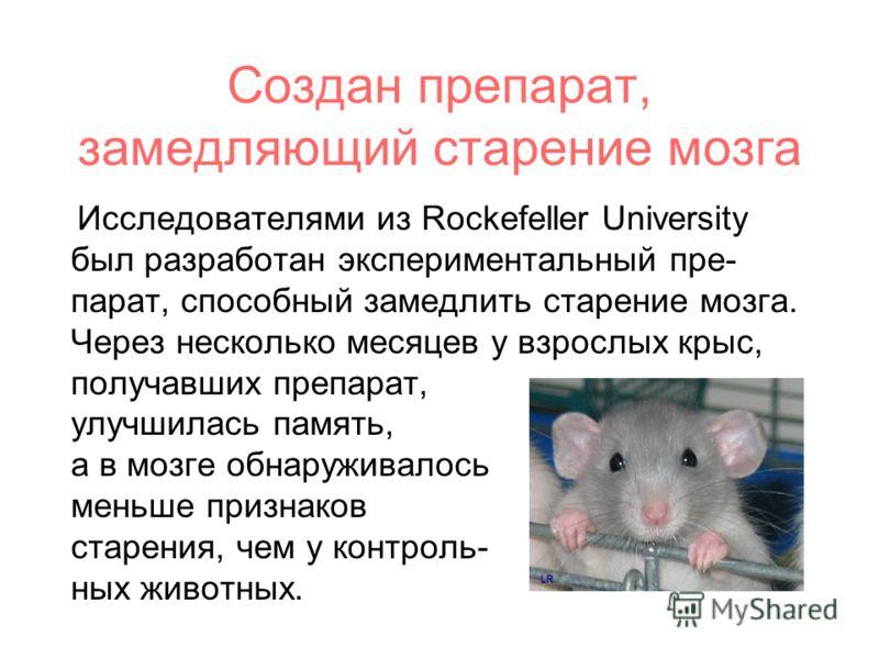 Создан препарат, замедляющий старение мозга Исследователями из Rockefeller University был разработан экспериментальный пре- парат, способный замедлить старение мозга. Через несколько месяцев у взрослых крыс, получавших препарат, улучшилась память, а