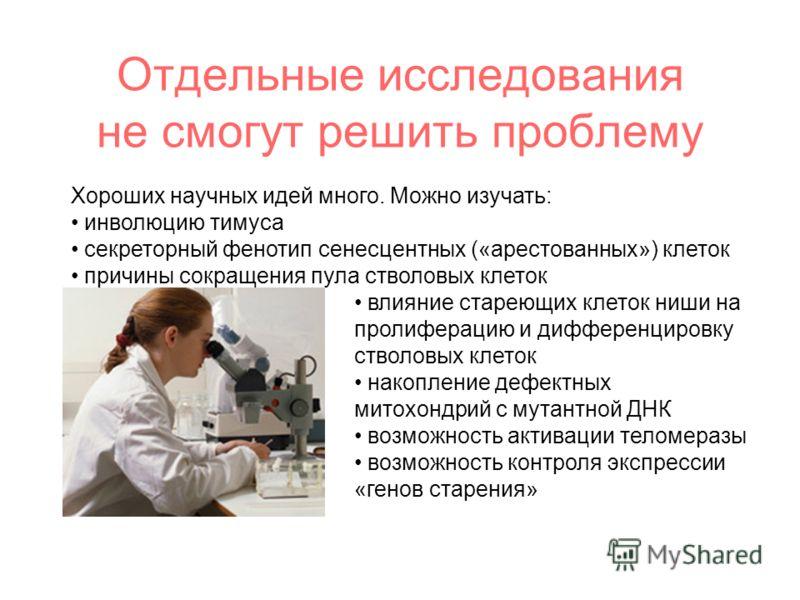 Хороших научных идей много. Можно изучать: инволюцию тимуса секреторный фенотип сенесцентных («арестованных») клеток причины сокращения пула стволовых клеток влияние стареющих клеток ниши на пролиферацию и дифференцировку стволовых клеток накопление