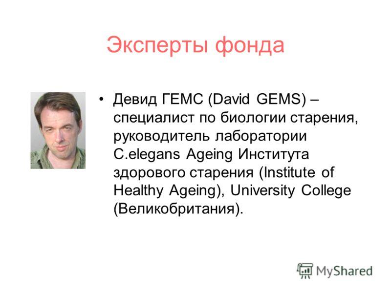 Эксперты фонда Девид ГЕМС (David GEMS) – специалист по биологии старения, руководитель лаборатории C.elegans Ageing Института здорового старения (Institute of Healthy Ageing), University College (Великобритания).