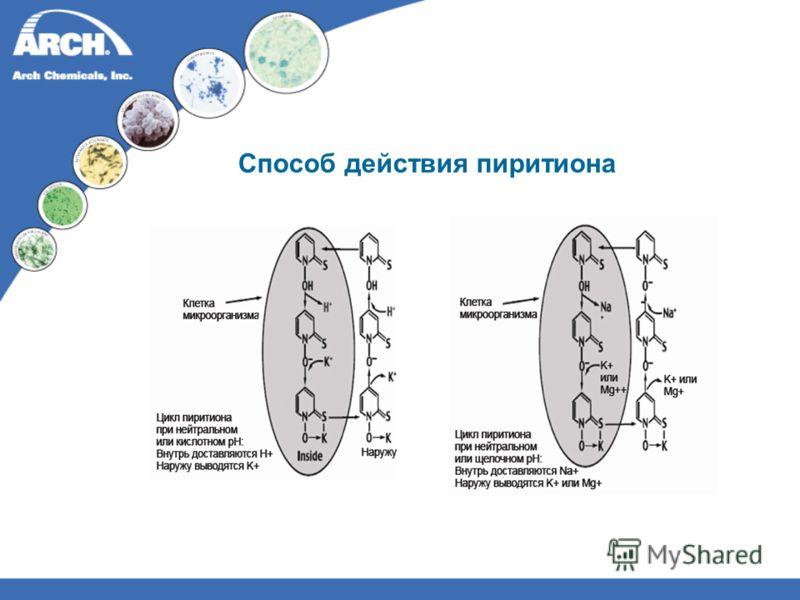Способ действия пиритиона