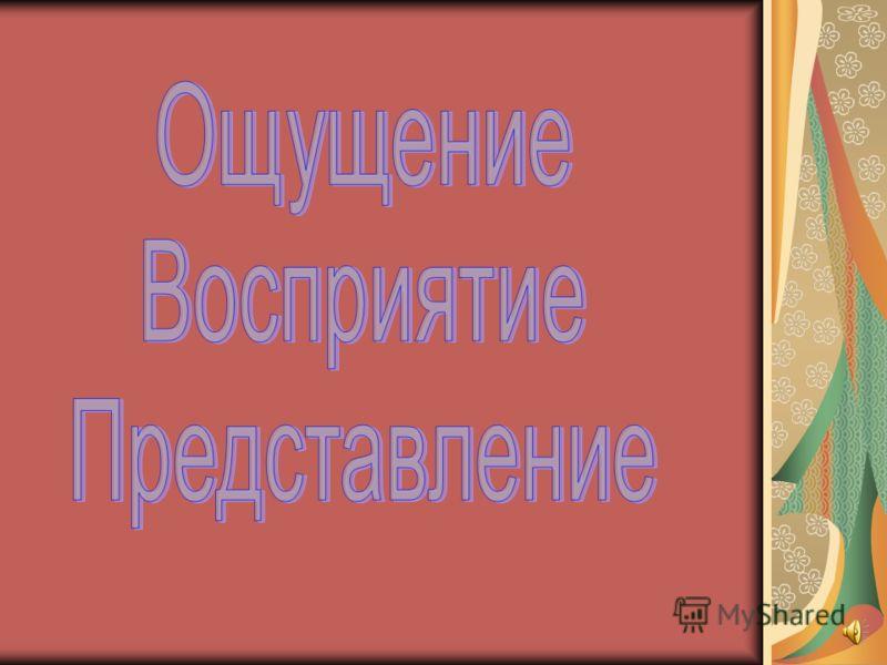 Как человек познает МИР ? Группа 7361 – Бакалавры педагогики Великий Новгород 2008