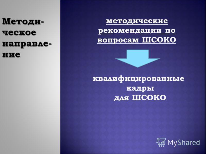 Методи- ческое направле- ние методические рекомендации по вопросам ШСОКО квалифицированные кадры для ШСОКО