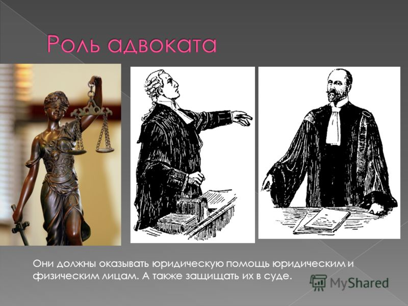 Они должны оказывать юридическую помощь юридическим и физическим лицам. А также защищать их в суде.
