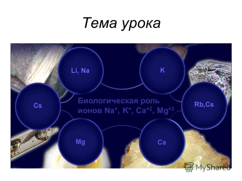 Тема урока Биологическая роль ионов Na +, K +, Ca +2, Mg +2