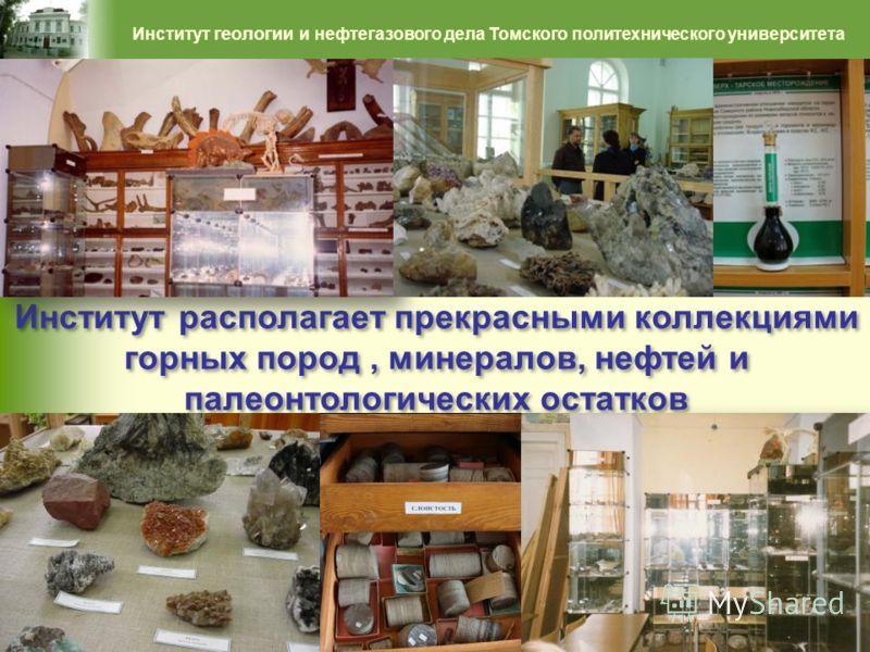 Институт располагает прекрасными коллекциями горных пород, минералов, нефтей и палеонтологических остатков 40 Институт геологии и нефтегазового дела Томского политехнического университета