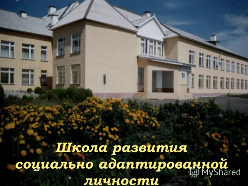 Школа развития социально адаптированной личности