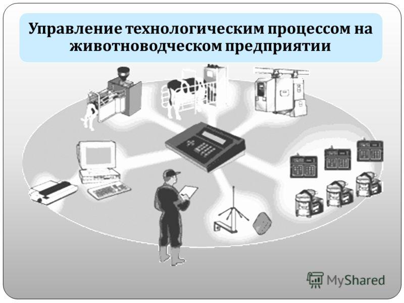 Управление технологическим процессом на животноводческом предприятии