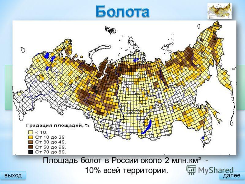 далее Причины образования: Большое количество осадков Малое испарение Замедленный сток Площадь болот в России около 2 млн.км² - 10% всей территории. Зарастание водоемов