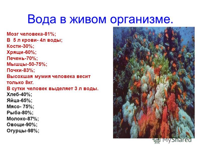Вода в живом организме. Мозг человека-81%; В 5 л крови- 4л воды; Кости-30%; Хрящи-60%; Печень-70%; Мышцы-50-75%; Почки-83%; Высохшая мумия человека весит только 8кг. В сутки человек выделяет 3 л воды. Хлеб-40%; Яйца-65%; Мясо- 75%; Рыба-80%; Молоко-8