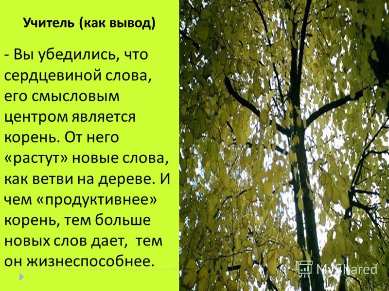 - Вы убедились, что сердцевиной слова, его смысловым центром является корень. От него « растут » новые слова, как ветви на дереве. И чем « продуктивнее » корень, тем больше новых слов дает, тем он жизнеспособнее. Учитель ( как вывод )
