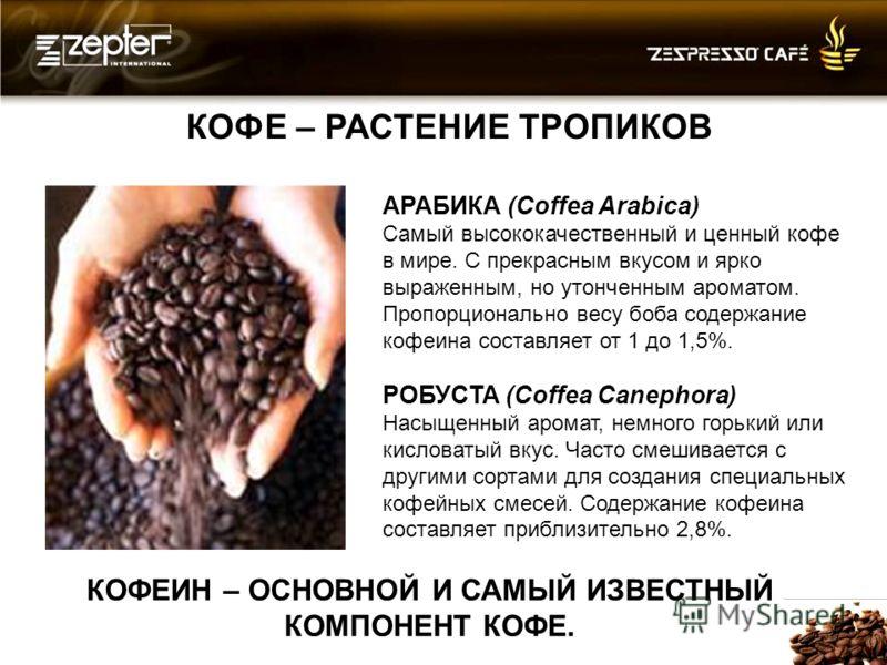 КОФЕ – РАСТЕНИЕ ТРОПИКОВ КОФЕИН – ОСНОВНОЙ И САМЫЙ ИЗВЕСТНЫЙ КОМПОНЕНТ КОФЕ. АРАБИКА (Coffea Arabica) Самый высококачественный и ценный кофе в мире. С прекрасным вкусом и ярко выраженным, но утонченным ароматом. Пропорционально весу боба содержание к