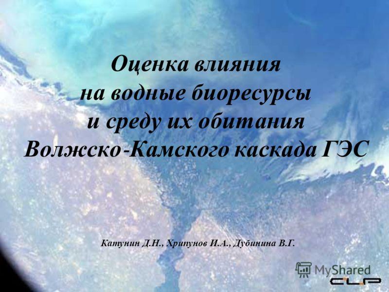 Оценка влияния на водные биоресурсы и среду их обитания Волжско - Камского каскада ГЭС Катунин Д.Н., Хрипунов И.А., Дубинина В.Г.