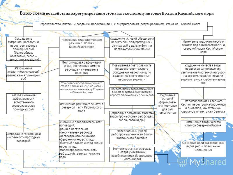 Блок-схема воздействия зарегулирования стока на экосистему низовье Волги и Каспийского моря Строительство плотин и создание водохранилищ с внутригодовым регулированием стока на Нижней Волге Сокращение миграционного пути и нерестового фонда проходных