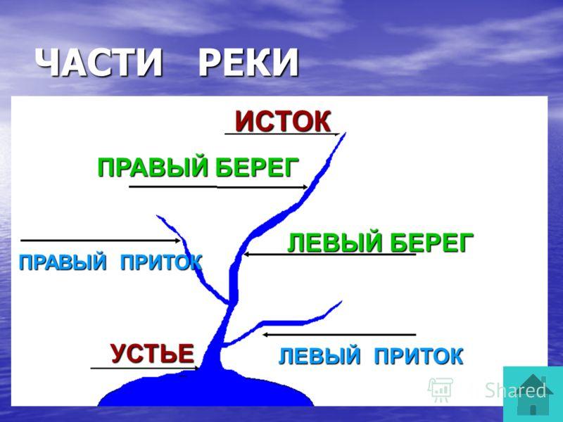 Течение – это движение воды в реке. Быстрое Быстрое Медленное Медленное Равнинная река Равнинная река Горная река Горная река