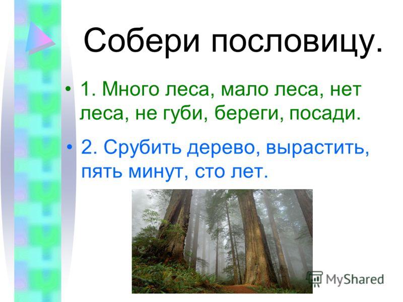 Собери пословицу. 1. Много леса, мало леса, нет леса, не губи, береги, посади. 2. Срубить дерево, вырастить, пять минут, сто лет.