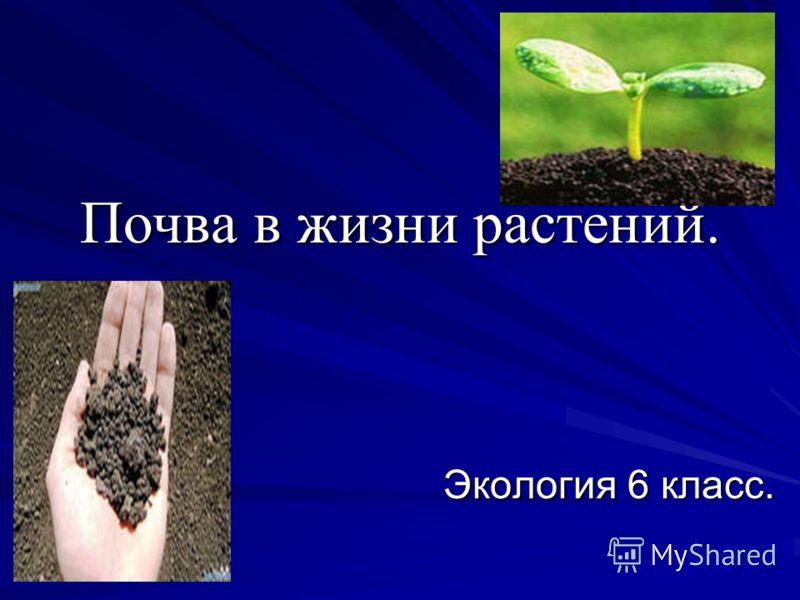 Почва в жизни растений. Экология 6 класс. Экология 6 класс.