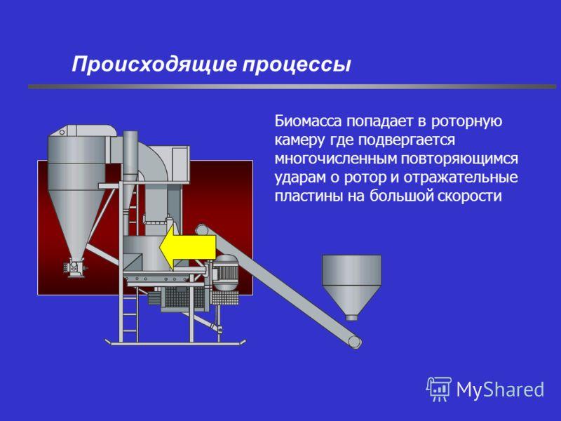 Биомасса попадает в роторную камеру где подвергается многочисленным повторяющимся ударам о ротор и отражательные пластины на большой скорости Происходящие процессы