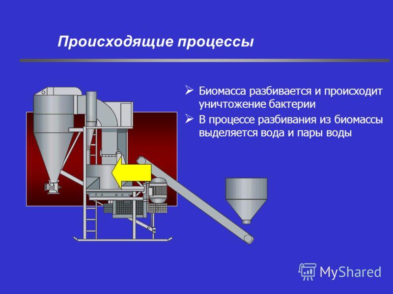 Биомасса разбивается и происходит уничтожение бактерии В процессе разбивания из биомассы выделяется вода и пары воды Происходящие процессы