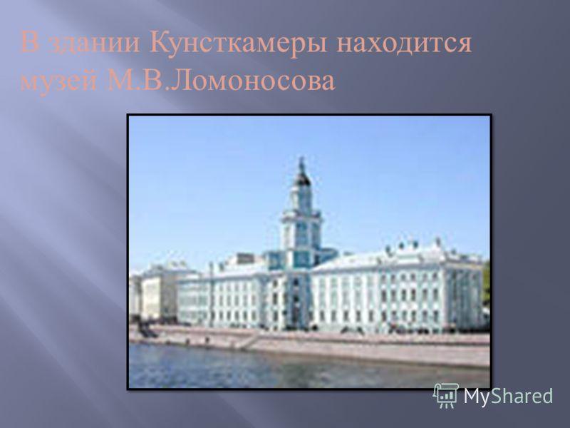 В здании Кунсткамеры находится музей М. В. Ломоносова