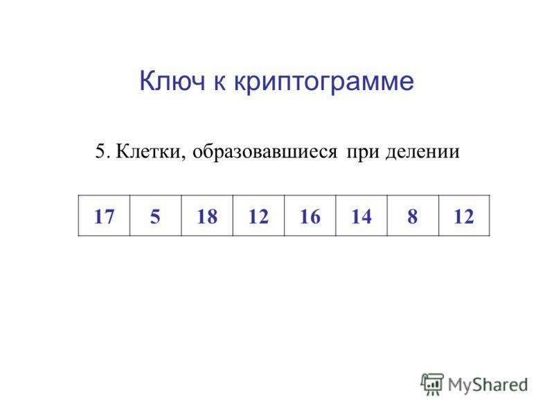 Ключ к криптограмме 4.Тонкий участок оболочки клетки 155162