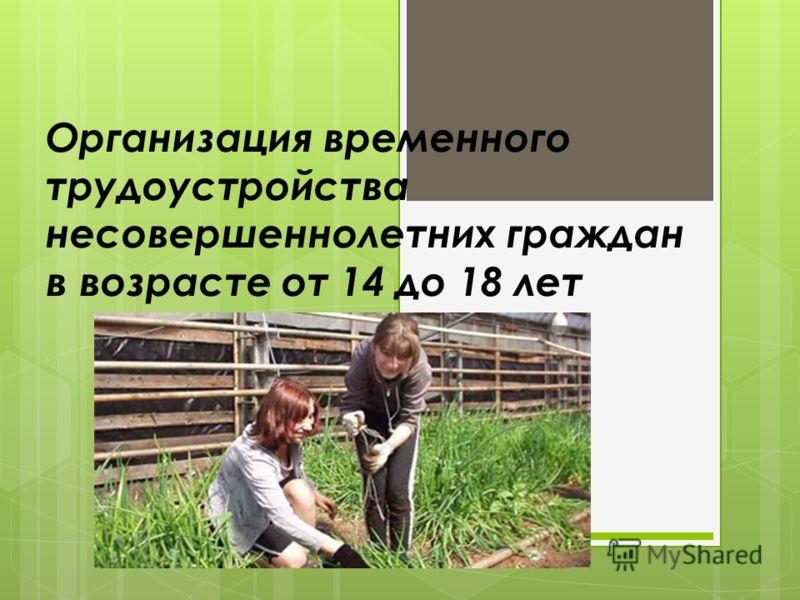 Организация временного трудоустройства несовершеннолетних граждан в возрасте от 14 до 18 лет