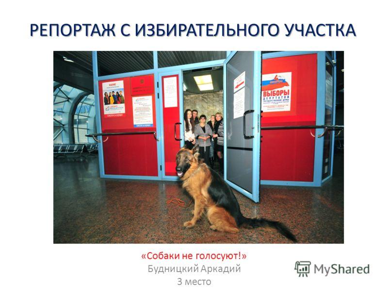 РЕПОРТАЖ С ИЗБИРАТЕЛЬНОГО УЧАСТКА «Собаки не голосуют!» Будницкий Аркадий 3 место
