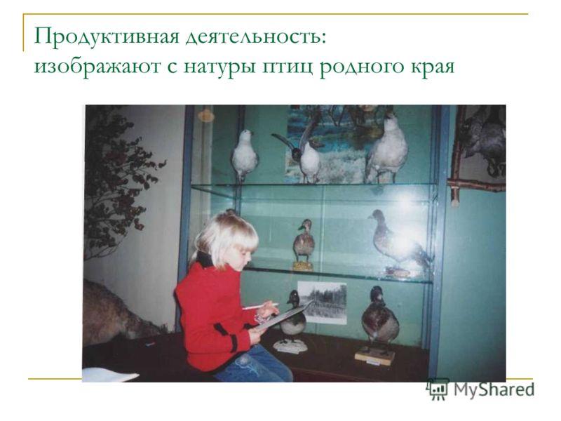Продуктивная деятельность: изображают с натуры птиц родного края