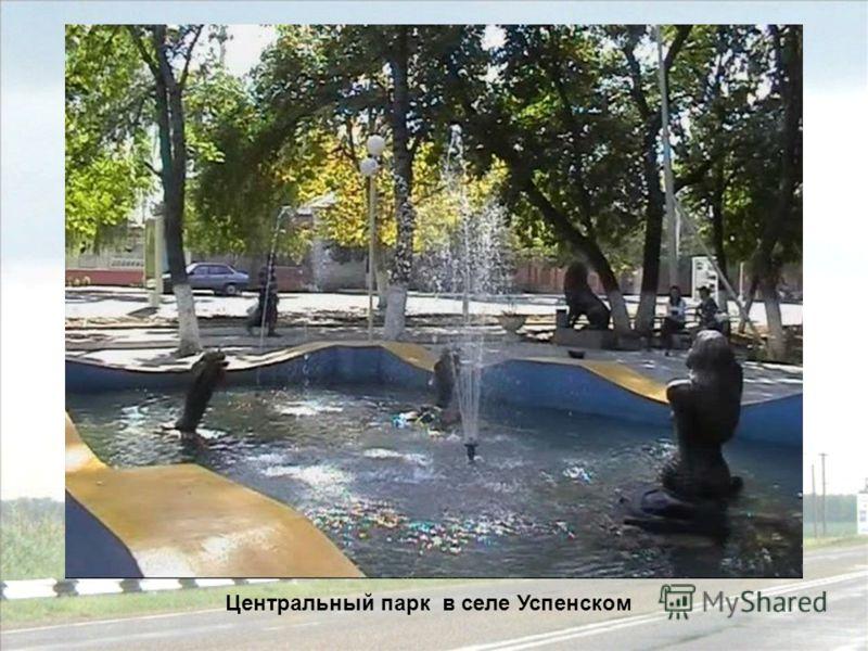 Центральный парк в селе Успенском