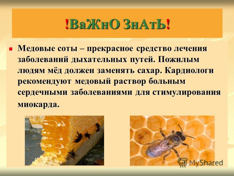 Медовые соты – прекрасное средство лечения заболеваний дыхательных путей. Пожилым людям мёд должен заменять сахар. Кардиологи рекомендуют медовый раствор больным сердечными заболеваниями для стимулирования миокарда. Медовые соты – прекрасное средство