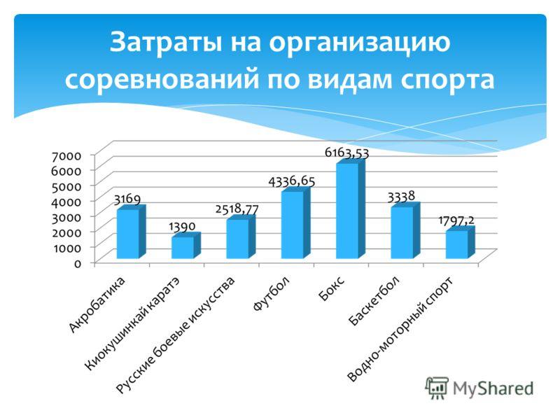 Затраты на организацию соревнований по видам спорта
