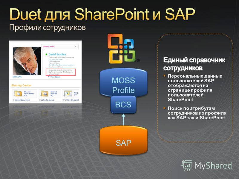 SAP MOSS Profile MOSS Profile BCS