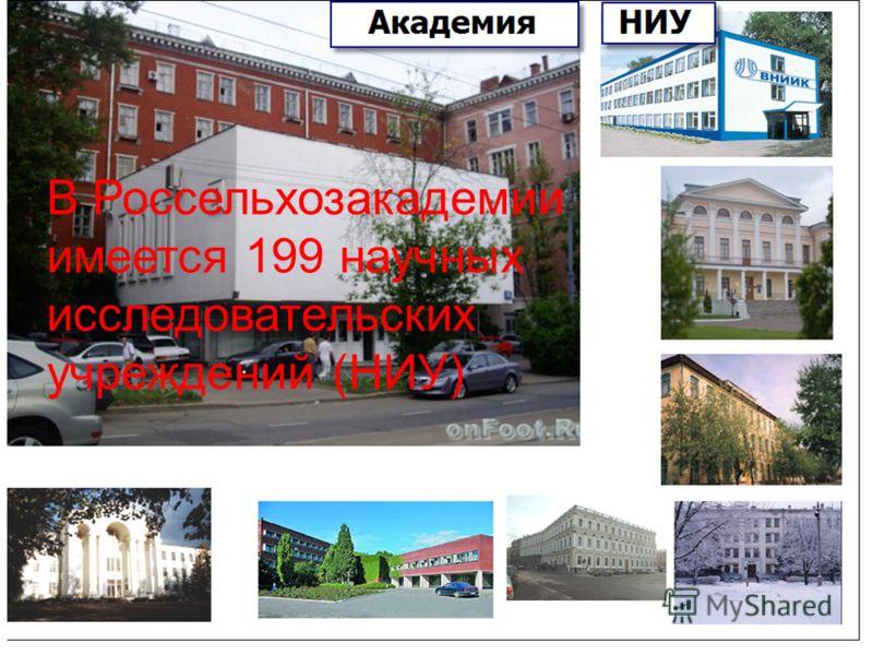 В Россельхозакадемии имеется 199 научных исследовательских учреждений (НИУ)