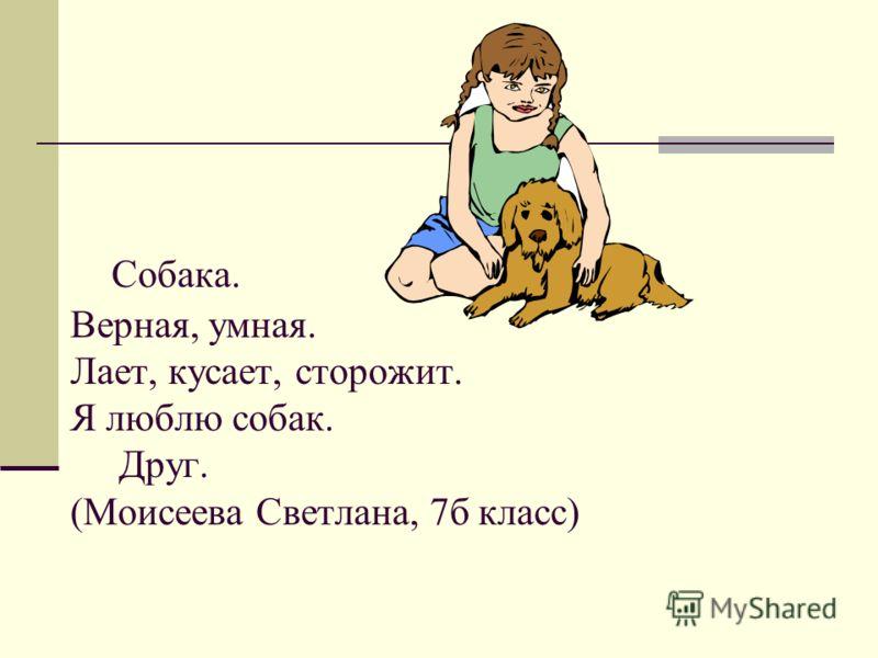 Собака. Верная, умная. Лает, кусает, сторожит. Я люблю собак. Друг. (Моисеева Светлана, 7б класс)